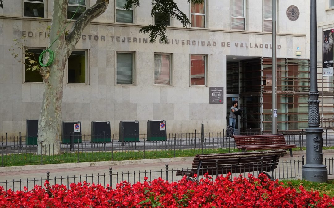 University of Valladolid – GEEDS